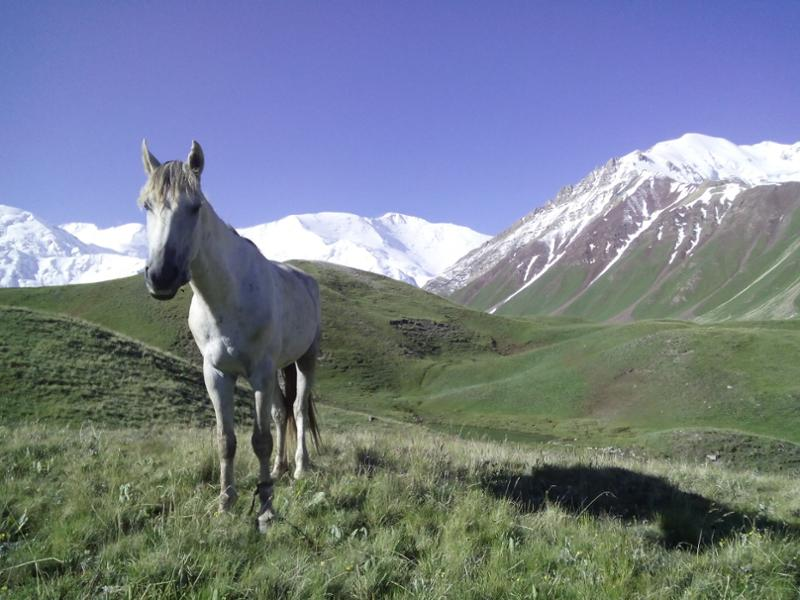 The three highest summits of Kyrgyzstan